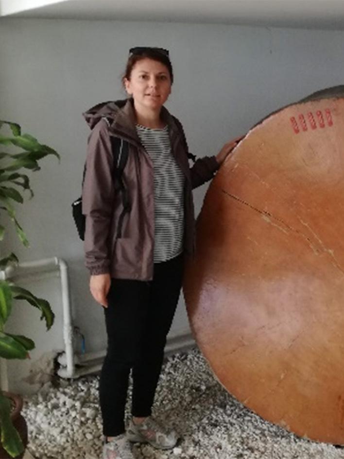 Δέσποινα – Μαρία Βλαχάκη